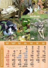 Nimfa 2021, wrzesień - kalendarz