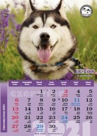Północniaki 2021, czerwiec - kalendarz