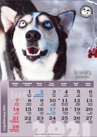 Północniaki 2021, luty - kalendarz