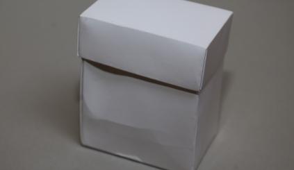 Pudełkoz wieczkiem, duże